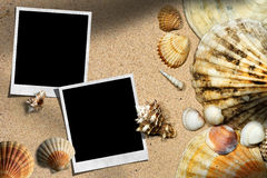 Beach Vacation - Seashells and Instant Photos Stock Photos