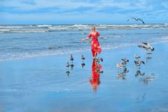 Beach vacation. Woman running on beach by sea with seagulls. Ocean Shores in Olympic Peninsula. Seattle. Washington. United States of America royalty free stock photo