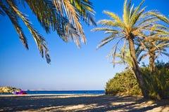 Beach Vai Stock Photography