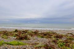 Beach in Vama Veche Stock Photo