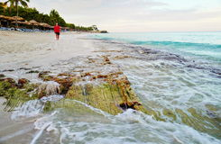 The beach of Varadero in Cuba Stock Images