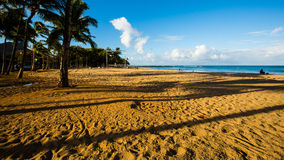 Beach Waikiki. The beach is very quiet in the early morning stock photography