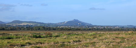 Beach view . A view of the sugarloaf from the murrough wetlands with swans flying past Stock Photography
