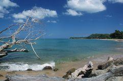 Beach View. This is one of the many beaches I visit in Rincon famous for the fallen tree Stock Image