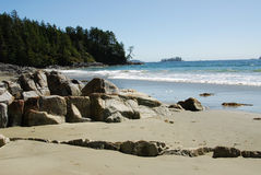 Beach view. In tofino (pacific rim national park) in vancouver island, british columbia, canada Royalty Free Stock Photo
