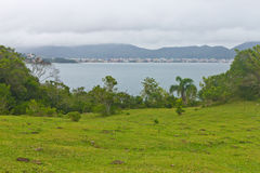 Beach view on Bombinhas Royalty Free Stock Image