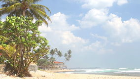 Beach view in Hikkaduwa with waves splashing the beach and clouds passing by. stock footage