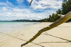 Beach view from an paradise landscape. With tree Stock Photos