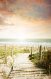 Beach view. Pathway leading to the beach Royalty Free Stock Photography