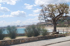 Beach View Tarragona Royalty Free Stock Photo