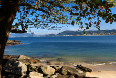 Beach view under a tree in Niteroi, Rio de Janeiro Royalty Free Stock Images