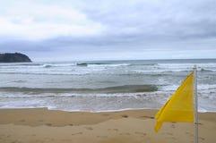 Beach of Villaviciosa in Spain. Landscape of atlantic sand beach and yellow flag in Villaviciosa in Spain Stock Photo