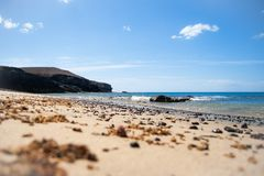 Beach, volcanic dark stones and blue sky. Lonely beach with volcanic dark stones and seaweed on it. Blue sky and a dark cliff on the background Stock Images
