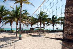 Beach volleyball net. Surrounded by coco palms Royalty Free Stock Images