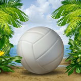 Beach Volleyball. On tropical sand as a summer sports and fitness symbol of a team leisure activity playing with a leather ball serving a volley and rally in Royalty Free Stock Photos