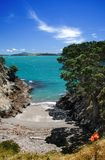 Beach on Waiheke Island. Scenic view of cove and beach on Waiheke Island, Hauraki Gulf of New Zealand Stock Images