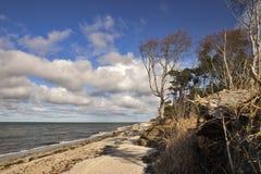 Beach Walk. At the Baltic Sea Coast of Darss Island, Germany Royalty Free Stock Photography