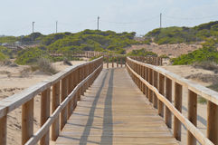 A Wooden Beach Walkway Royalty Free Stock Photography