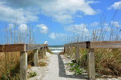 Beach Walkway Under Clouds Stock Image