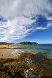 Beach  water  coastline and summer in lanzarote spain Royalty Free Stock Image
