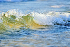 Beach Wave Stock Photography