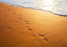 Beach, wave and footprints at sunset time Stock Photography