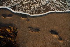 Beach, wave and footprints at sunset time Royalty Free Stock Images