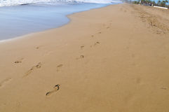 Beach, wave and footsteps Royalty Free Stock Photo