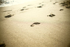 Beach, wave and footsteps Royalty Free Stock Image