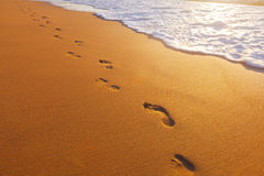 Beach, wave and footsteps at sunset time Royalty Free Stock Images