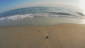 beach wave macro slow motion 4k