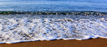 Beach. Wave of the sea on the sandy beach Stock Photography