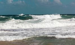Beach with waves on a rough sea, San Juan, Puerto Rico. Large waves break off the north shore of San Juan during a great time for surfers surfing royalty free stock images
