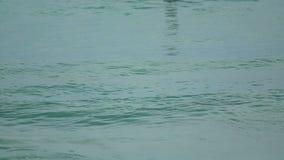Beach waves stock video footage