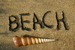 Beach This Way. Beach written in the sand and spiral shell Royalty Free Stock Photography