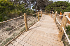 Beach way to Salinas beach in Formentera Stock Image