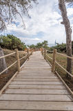 Beach way to Salinas beach in Ibiza Balearic islan Stock Photography