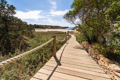 Beach way to Saona beach in Formentera Stock Images