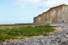 Beach with weeds and cliffs in Normandy Stock Images