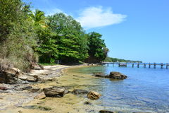 Beach of West Bay in Roatán, Honduras Royalty Free Stock Photography