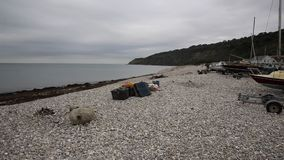 Beach west of the harbour at Lyme Regis Dorset England UK stock footage