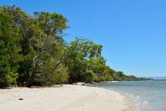 Beach on South Stradbroke Island in Queensland, Australia. Beach on the western coast of South Stradbroke Island in Queensland, Australia stock photos