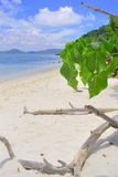Beach. The white sand beach under the blue sky Stock Photo
