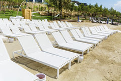 Beach with white  sunbeds in a row  on a sandy beach Stock Photography