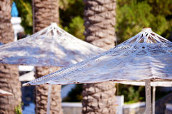 Beach white umbrellas in a row.Close up Stock Image