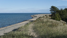 Beach at Whitefish Point Royalty Free Stock Images