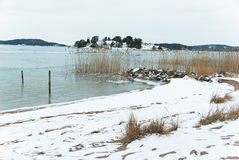 Beach in winter royalty free stock photography