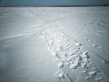 Beach in winter in Siberia. Snow and ice on the sea to the shore Stock Photography