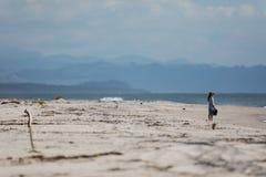 beach woman young Στοκ Φωτογραφία