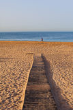 Beach wood footpath Stock Photography